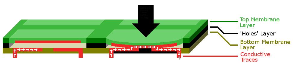 keyboard membran vs keyboard mekanikal. mana yang kamu pilih? Keyboard Membran Vs Keyboard Mekanikal. Mana yang Kamu Pilih? Membrane keyboard diagram FULL SCALE